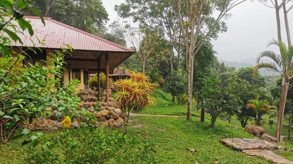 Ecolodge «Cordillera Escalera»